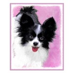 Papillon (White and Black) Small Poster