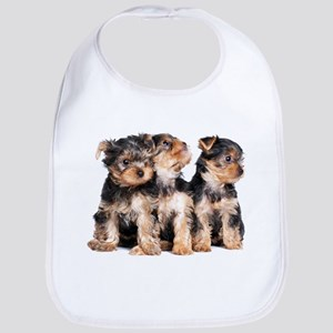 Yorkie Puppies Bib