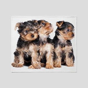 Yorkie Puppies Throw Blanket