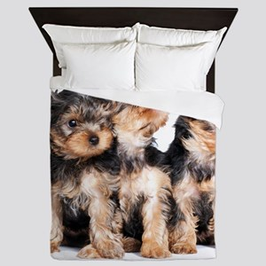 Yorkie Puppies Queen Duvet