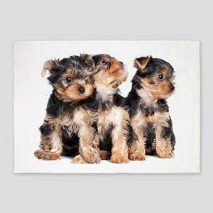 Yorkie Puppies 5'x7'Area Rug