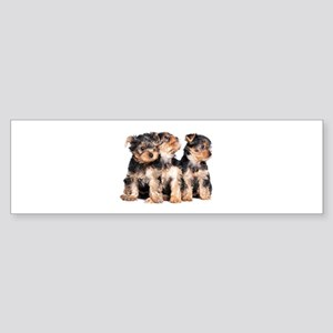 Yorkie Puppies Sticker (Bumper)