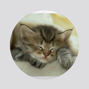 sleeping kitty Ornament (Round)