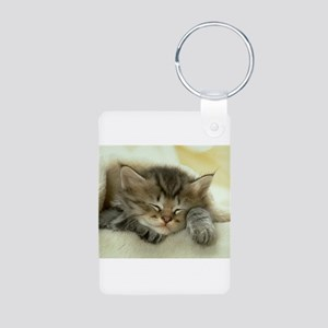 sleeping kitty Aluminum Photo Keychain