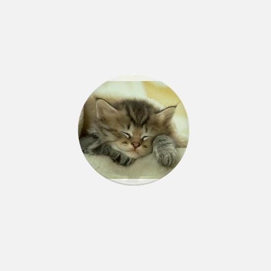 sleeping kitty Mini Button