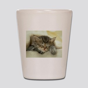 sleeping kitty Shot Glass