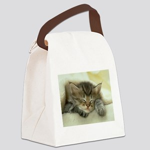 sleeping kitty Canvas Lunch Bag