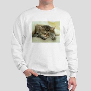 sleeping kitty Sweatshirt