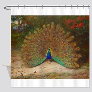 .Vintage Art of a Peacock Shower Curtain