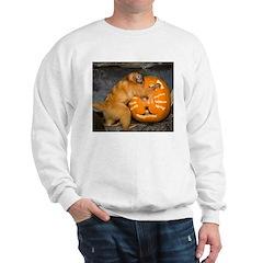 Tamarin With Pumpkin Sweatshirt