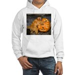 Tamarin With Pumpkin Hooded Sweatshirt