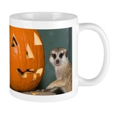 Meerkat Next to Pumpkin Mug