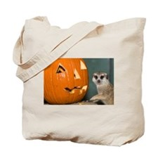 Meerkat Next to Pumpkin Tote Bag