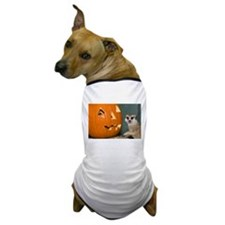 Meerkat Next to Pumpkin Dog T-Shirt