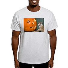 Meerkat Next to Pumpkin Light T-Shirt