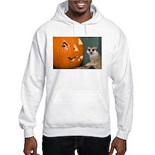 Meerkat Next to Pumpkin Hooded Sweatshirt