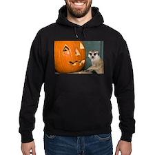 Meerkat Next to Pumpkin Hoodie (dark)