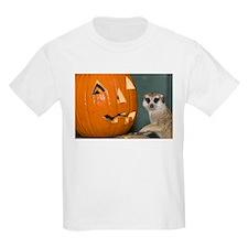 Meerkat Next to Pumpkin Kids Light T-Shirt