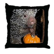 Porcupine Holding Mini Pumpkin Throw Pillow
