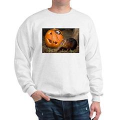 Elephant Shrew With Pumpkin Sweatshirt