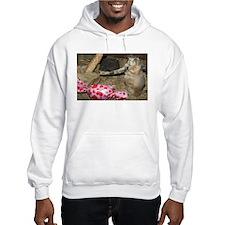 Chipmunk With Present Hooded Sweatshirt