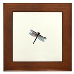 Dragonfly Painting Framed Tile