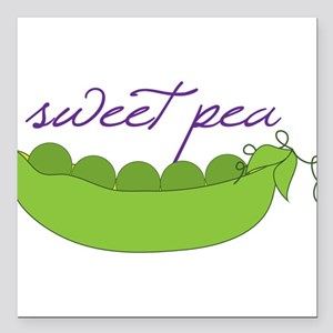 "Sweet Pea Square Car Magnet 3"" x 3"""