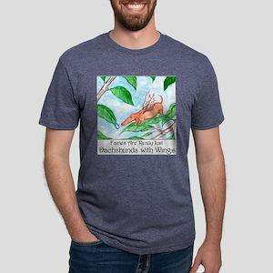 fairies10x10 Mens Tri-blend T-Shirt