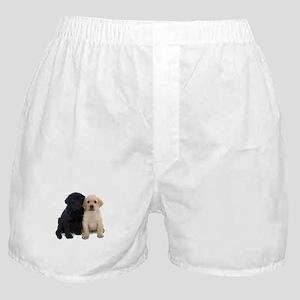 Black and White Labrador Puppies. Boxer Shorts