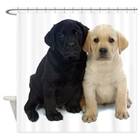 Black And White Labrador Puppies. Shower Curtain