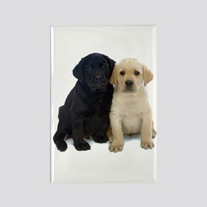 Black and White Labrador Puppies. Rectangle Magnet