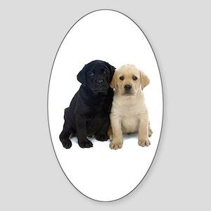 Black and White Labrador Puppies. Sticker (Oval)