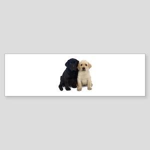 Black and White Labrador Puppies. Sticker (Bumper)