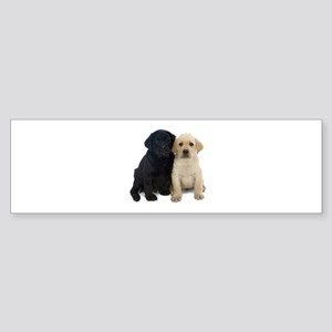 Black and White Labrador Puppies. Sticker (Bumper)