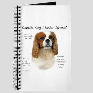 Cavalier (Blenheim) Journal