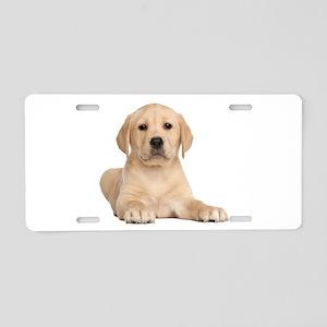 Golden Lab Aluminum License Plate