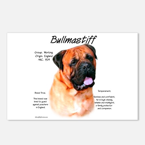 Bullmastiff (red) Postcards (Package of 8)