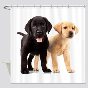 Labrador Siblings Shower Curtain