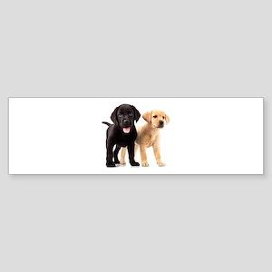 Labrador Siblings Sticker (Bumper)