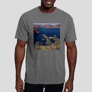 lakeargyle Mens Comfort Colors Shirt