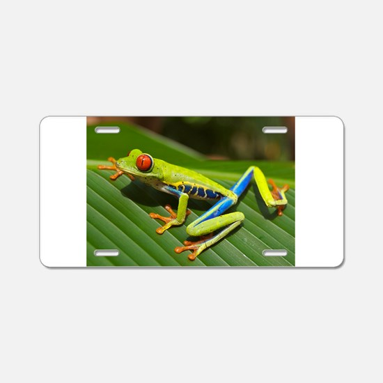 Red Eyed Tree Frog Aluminum License Plate