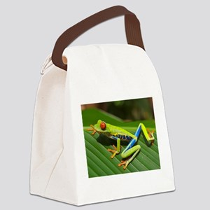 Red Eyed Tree Frog Canvas Lunch Bag