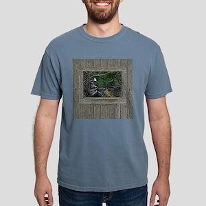 Old Cabin Window Bald Ea Mens Comfort Colors Shirt