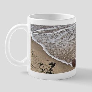 STRANDED HORSESHOE CRAB mug