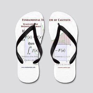 Fundamental Theorem of Calculus Flip Flops