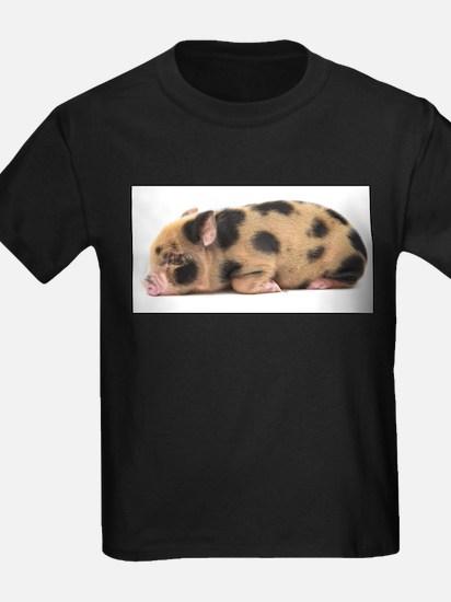 Micro pig sleeping T