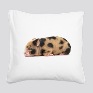 Micro pig sleeping Square Canvas Pillow