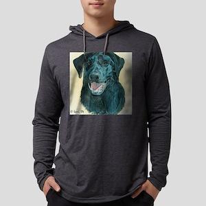 dflyingdisc Mens Hooded Shirt