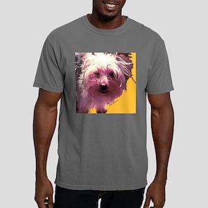 angus4 Mens Comfort Colors Shirt