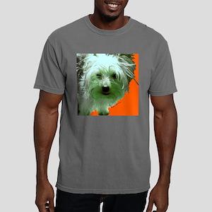 angus3 Mens Comfort Colors Shirt
